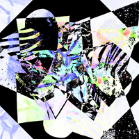 Picture of Graphic collage mix zebra