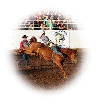 Picture of Bareback Riding
