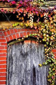 Picture of The Doorway